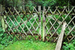 fence-436569_640(6)